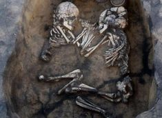 Late last year, archaeologists revealed an incredible discovery in a village in the Novosibirsk region of Siberia where scientists were studying some 600 Bronze Age tombs – dozens of them contai