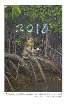 voeux pour l'année du singe