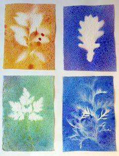 """Homemade Watercolor Spray Paint--leaf shape/botany cabinet art extension. Collect various leaves corresponding to shapes in botany cabinet and spray paint. Cd paste individual prints of varying colors on posterboard for """"paper quilt."""""""