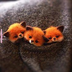 Ideas & Decor – Animals Ideas & Decor – – Animal Wallpaper And iphone Baby Animals Super Cute, Cute Wild Animals, Baby Animals Pictures, Cute Baby Dogs, Cute Animal Drawings, Cute Little Animals, Cute Animal Pictures, Cute Funny Animals, Felt Animals