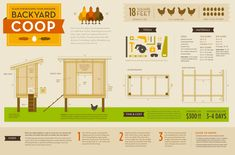 DIY Chicken Coop construction plan infographic from the Tangled Nest blog