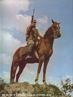 Mounted Infantry called Greys Scouts