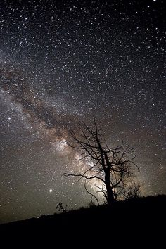 Did u know when u stare at the stars at night you are actually looking back in time? Sometimes the light from the stars takes 75,000 years to Eons for the light to actually get to earth. Some of those stars are already dead your seeing old light. Or that the earth orbits the sun faster than a jet plane? Your always looking into the past when u look into the sky. That is beautiful to me.