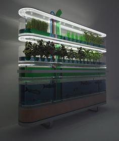 Biosphere Home Farming Concept