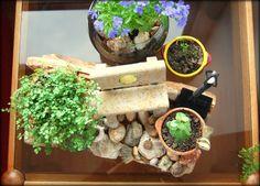 Mini-jardines De Origen. De Origen small gardens. Planter Pots, Mini Gardens, Raw Materials
