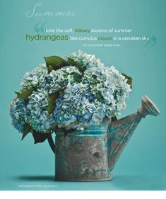 How pretty is this watering can filled with hydrangeas? Designed by Eddie Ross.