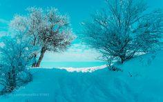 Winter Scene by SejmenovicMevludin via http://ift.tt/2mKMm4Q