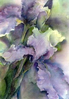 Iris Gaze by Anne Watson Sorensen Watercolor ~ 11 x 8.5