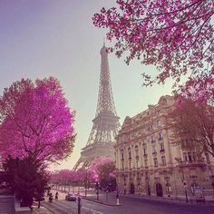 Hotels-live.com/pages/comparateur-hotels.html - Paris France photo by @chklvsv by awesomedreamplaces https://www.instagram.com/p/-8sbr8lNhQ/