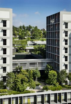 WOHA's Kampung Admiralty in Singapore has important implications for urban planning World Architecture Festival, Glass Structure, Hospital Design, Land Use, Apartment Plans, High Rise Building, Construction Design, Home Design Plans, Urban Planning