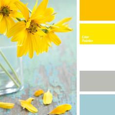 "bright yellow -Color Palette Ideas A great and harmonious color palette that will come in handy when planning decoration for a winter wedding. This color palette combines the colors of a fabulous winter morning with the bright and flashy ""dashes"" of sun. Paint Schemes, Colour Schemes, Color Combos, Color Patterns, Colour Pallette, Color Palate, Pantone, Decoration Palette, Design Seeds"