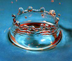 water droplet. Amazing shot.