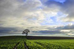 Countryside by Grzegorz Wanowicz on 500px