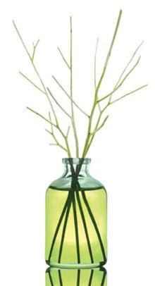 Llum y Spa aromaterapia
