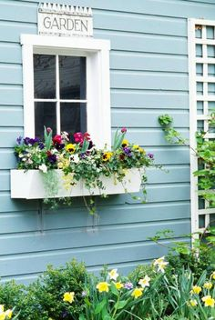 Tulips and pansies combine in simple bright spring window box