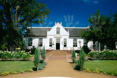 View top-quality stock photos of Cape Dutch Architecture Early C Neethlingshof Wine Estate Stellenbosch South Africa. Find premium, high-resolution stock photography at Getty Images. Cape Dutch, Cape Town, South Africa, Places To Visit, Wine, Stock Photos, Mansions, Architecture, House Styles