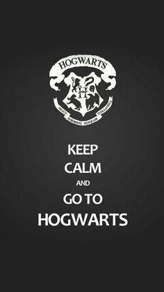 64 Ideas birthday meme harry potter hogwarts for 2019 Harry Potter Tumblr, Harry Potter World, Harry Potter Thema, Classe Harry Potter, Arte Do Harry Potter, Harry Potter Pictures, Harry Potter Books, Harry Potter Love, Harry Potter Universal