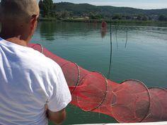 Pescatori per un giorno, figata, ma la protezione 50 è gradita #altrasimeno @iltrasimeno foto di @karse