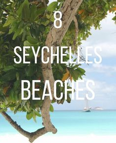 You need to See The Stunning Seychelles Beaches     SHARE http://sharetravelnews.blogspot.my/2016/03/you-need-to-see-stunning-seychelles_19.html