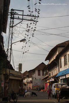 Kochi, Kerala Landscape Drawings, City Landscape, Landscape Pictures, Abstract Landscape, Watercolor Paintings Nature, Watercolor City, Watercolour, Village Photography, Landscape Photography