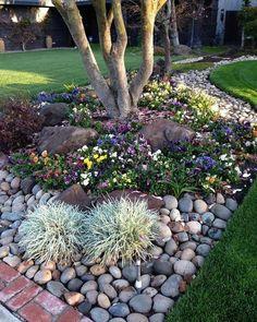 Cheap Landscaping Ideas, Landscaping Supplies, Landscaping With Rocks, Front Yard Landscaping, Landscaping Design, Outdoor Landscaping, Backyard Patio, Landscaping Equipment, Courtyard Landscaping