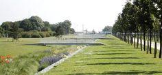 Lilas Park Grand Avenue  | Florence Mercier Paysagiste