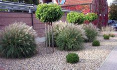 Le plus récent Aucun coût plantation Astuces House Front Porch, Side Garden, Plantation, Gras, Garden Landscaping, Fields, Garden Design, Plants, Landscapes