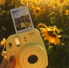 The yellow aesthetic Yellow Polaroid Die gelbe Ästhetik Gelbes Polaroid Yellow Aesthetic Pastel, Rainbow Aesthetic, Aesthetic Pastel Wallpaper, Aesthetic Colors, Aesthetic Collage, Aesthetic Backgrounds, Aesthetic Vintage, Aesthetic Pictures, Aesthetic Wallpapers