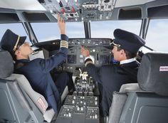 Co-Pilot lands plane! Oh my!