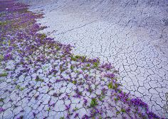 Good Badlands: Desert Photography by Guy Tal | Inspiration Grid | Design Inspiration