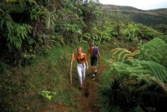 Inspirato picks the top hiking trails on Maui. Stay in Kapalua or Wailea and the best hikes are easy to access from your Signature Residence.