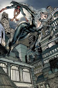 The Black Cat in all of her awesomeness - of course Spidey chases her!