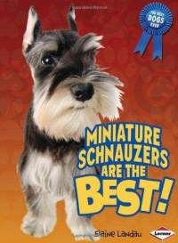 schnauzies are awesome!