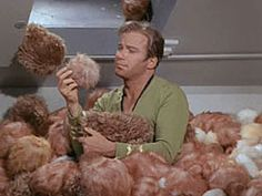 This may be the nerdiest thing I have ever pinned. It is a calculator to see how many tribbles would fill your house.