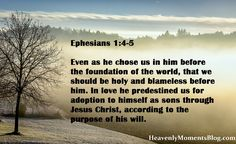 Ephesians 1:4-5 Even as he chose us in him before the foundation of the world, that we should be holy and blameless before him. In love he predestined us for adoption to himself as sons through Jesus Christ, according to the purpose of his will. #Jesus #JesusChrist #Christ #Christian #Christianity #religion #Lord #God #spiritual #Bible #verse #scripture #quote #Ephesians #book #hope #life #faith #heaven