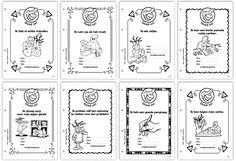 Kopieerbare complimentenkaarten - eerste en tweede leerjaar - Uitgeverij EFD