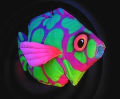tropical fish  what an amazing color arrangement, leave it to the creator to be…