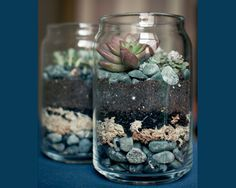 mason jar ideas - diy mason jar terrarium via Brittany and Dylan