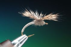 how to do a parachute fly.For more fly fishing info follow and subscribe www.theflyreelguide.com Also check out the original pinners/creators site and suppor #FlyFishingTips