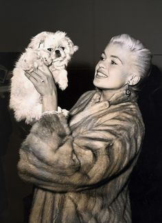 Jayne Mansfield and her Pekingese.......Uploaded By www.1stand2ndtimearound.etsy.com
