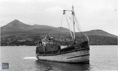 Aircraft Engine, Navy Ships, Sailing Ships, Over The Years, Celtic, Boats, Image, Ships, Sailboat