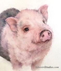 """""""Patches"""", watercolor pig painting by animal artist Teresa Silvestri.   Available as  a cute art print and greeting cards. Perfect for the pig art nursery and farmhouse decor!  To view more animal art by Teresa Silvestri, visit www.SilvestriStudios.com"""