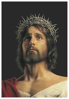 Behold the Man Painting of Christ and Crown of Thorns Bulletins, 100 Jesus Our Savior, Jesus Is Lord, Simon Dewey, Pictures Of Jesus Christ, Catholic Pictures, Lds Art, Jesus Face, King Of Kings, New Testament