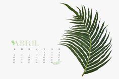 Designer Clothes, Shoes & Bags for Women Vintage Wall Art, Vintage Walls, Vintage Home Decor, Floral Wall Art, Handmade Home Decor, Botanical Prints, Fig, Plant Leaves, Polyvore