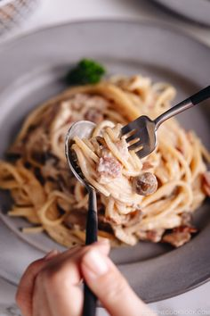 Creamy Mushroom and Bacon Pasta with a Japanese twist! A dash of soy sauce is the secret ingredient that gives nice umami and savoriness to the dish. Asian Noodle Recipes, Asian Recipes, Ethnic Recipes, Creamy Mushrooms, Stuffed Mushrooms, Easy Japanese Recipes, Japanese Food, Japanese Style, Kitchens