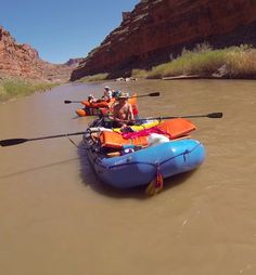 Cataract Oars SGX oars on a river rafting expedition on the San Juan River. #cataract #rafting #oars #sanjuan utahrivers #oarsome #slc #quality #handcrafted #oarshaft #oarblade #filamentwound #outfitters #raftingoutfitter #idahorivers #idaho #idahorafting #whitewatergear #madeinutah #carbonfiberoars #madeintheusa #rowing #toughoars #extremeoars #whitewater #whitewateroars #raftingoars #riverrafting #riverfun www.cataractoars.com www.advancedcomposites.com