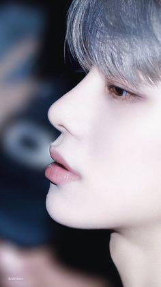 Metamorph ❝kim jungwoo isn't a human, he can be anything you want him to be. Nct 127, Winwin, Taeyong, Jaehyun, Kpop, Kim Jung Woo, Nct Dream, K Idols, Fandoms