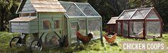 Chicken Coops & Backyard Chicken Coops | Williams-Sonoma