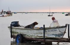 Dog and boat