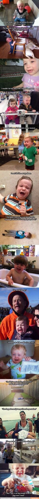 Toddler melt down explanations
